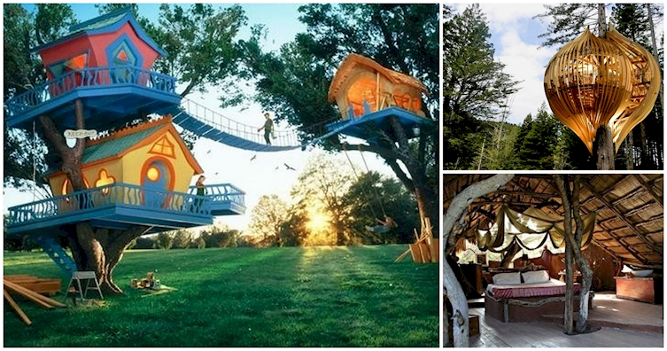 Outstanding 12 Awesome Tree Houses For The Inner Child In All Of Us Largest Home Design Picture Inspirations Pitcheantrous